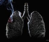 ¬ли¤ние курени¤ и различи¤ женской и мужской дыхательной системы